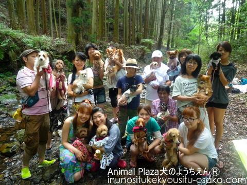 731川遊びイベント_犬のようちえんⓇ_大阪堀江教室 (5)
