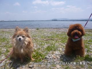 日本一の湖だもんね!