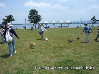 琵琶湖湖畔のなぎさ公園。
