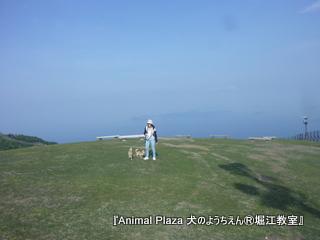 山頂は琵琶湖一面を見渡せて絶景!!