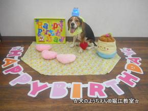 びーちゃん 4歳☆
