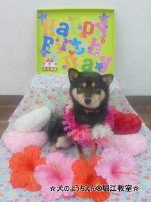 凜ちゃん 1歳☆