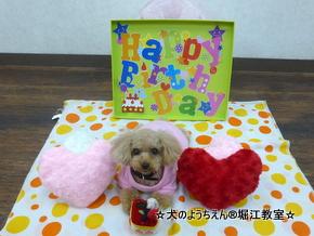 メグちゃん 3歳☆