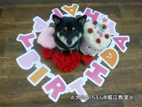 ルルちゃん 3歳☆