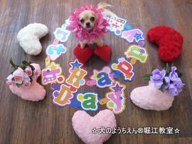 ピアちゃん 2歳☆