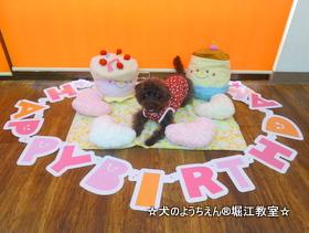エマちゃん 1歳☆