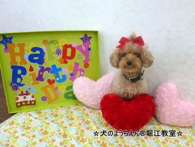 メグちゃん 4歳☆